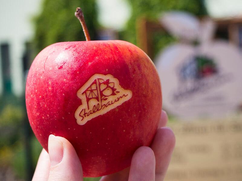 Stallbaum Apfel
